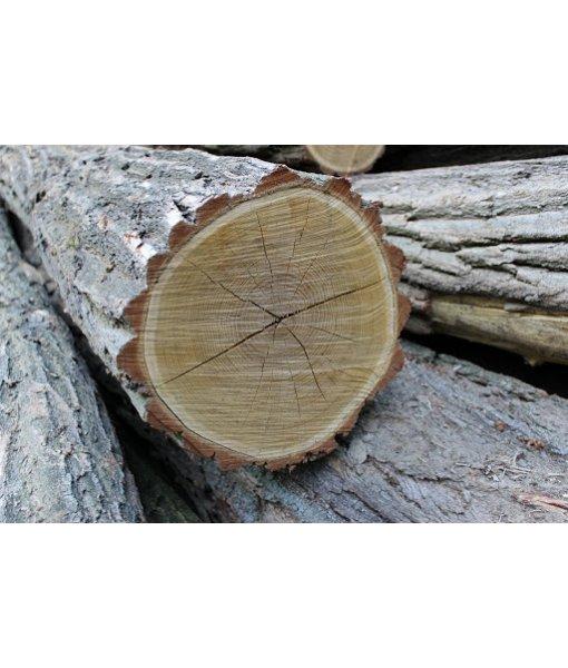 Akátové dřevo - s kůrou